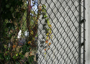 Cina Diamond Shape Fleksibel Wire Mesh Netting, Weatherproof Burung Aviary Wire Mesh pabrik